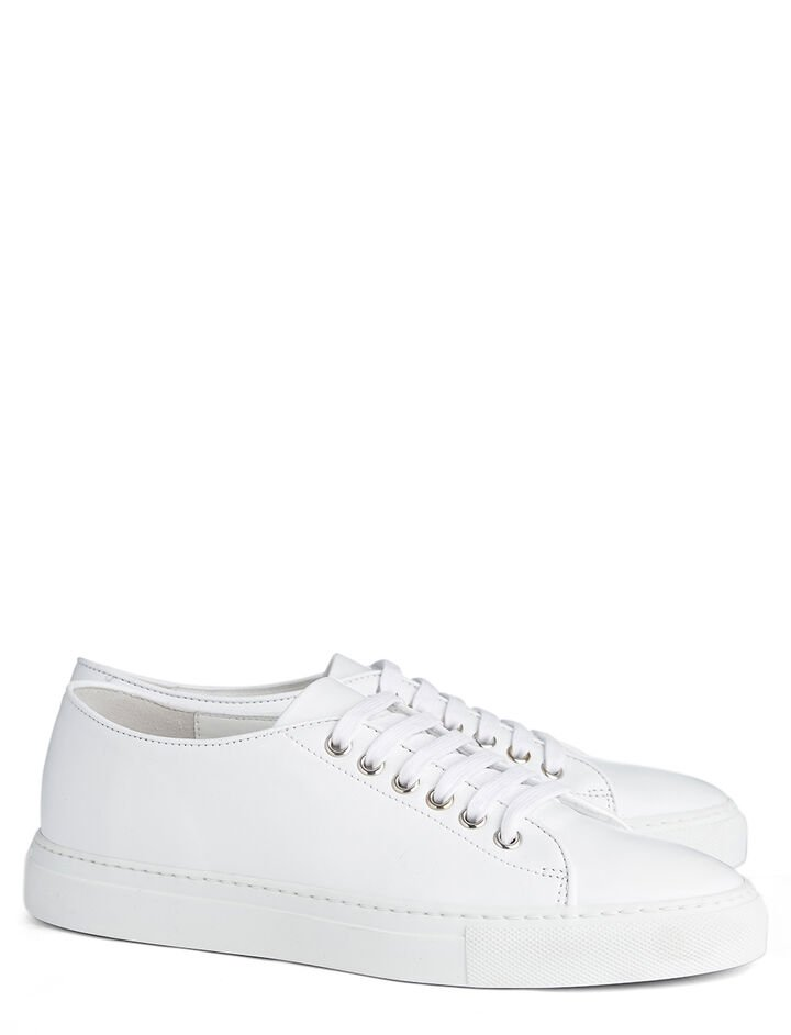 Leather Trainer, in WHITE, large | on Joseph