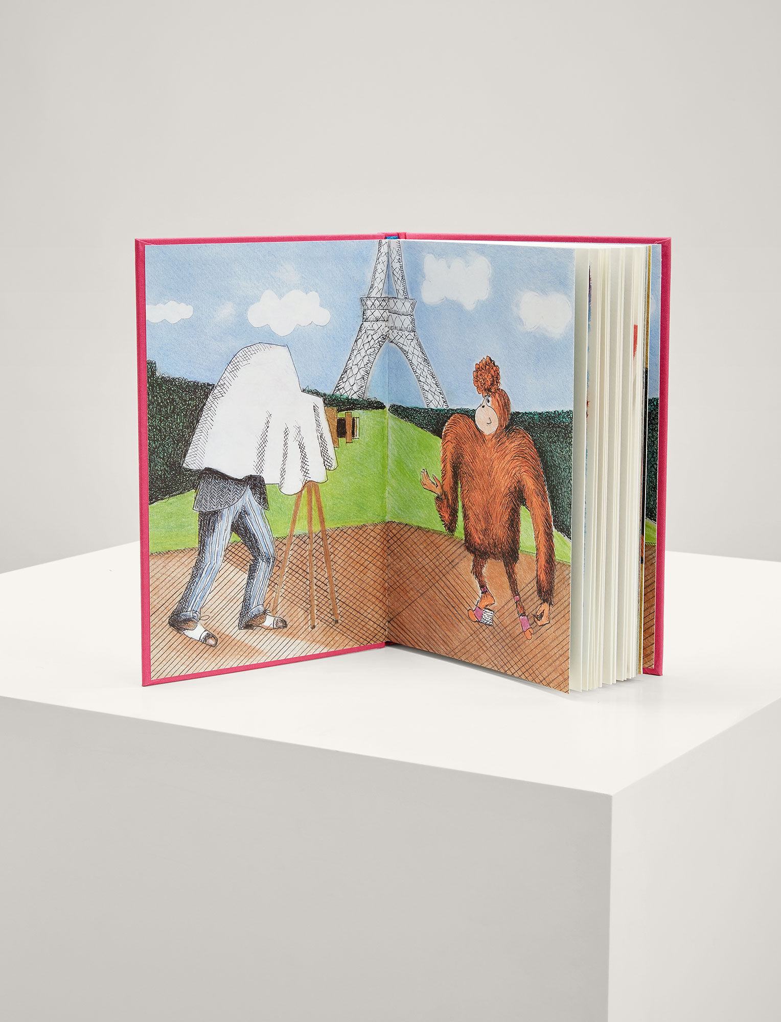 Joseph, GingerNutz Takes Paris: An Orangutan Conquers Fashion Book, in MULTICOLOUR
