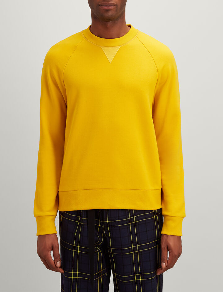 Jersey Sweatshirt, in DANDELION, large | on Joseph