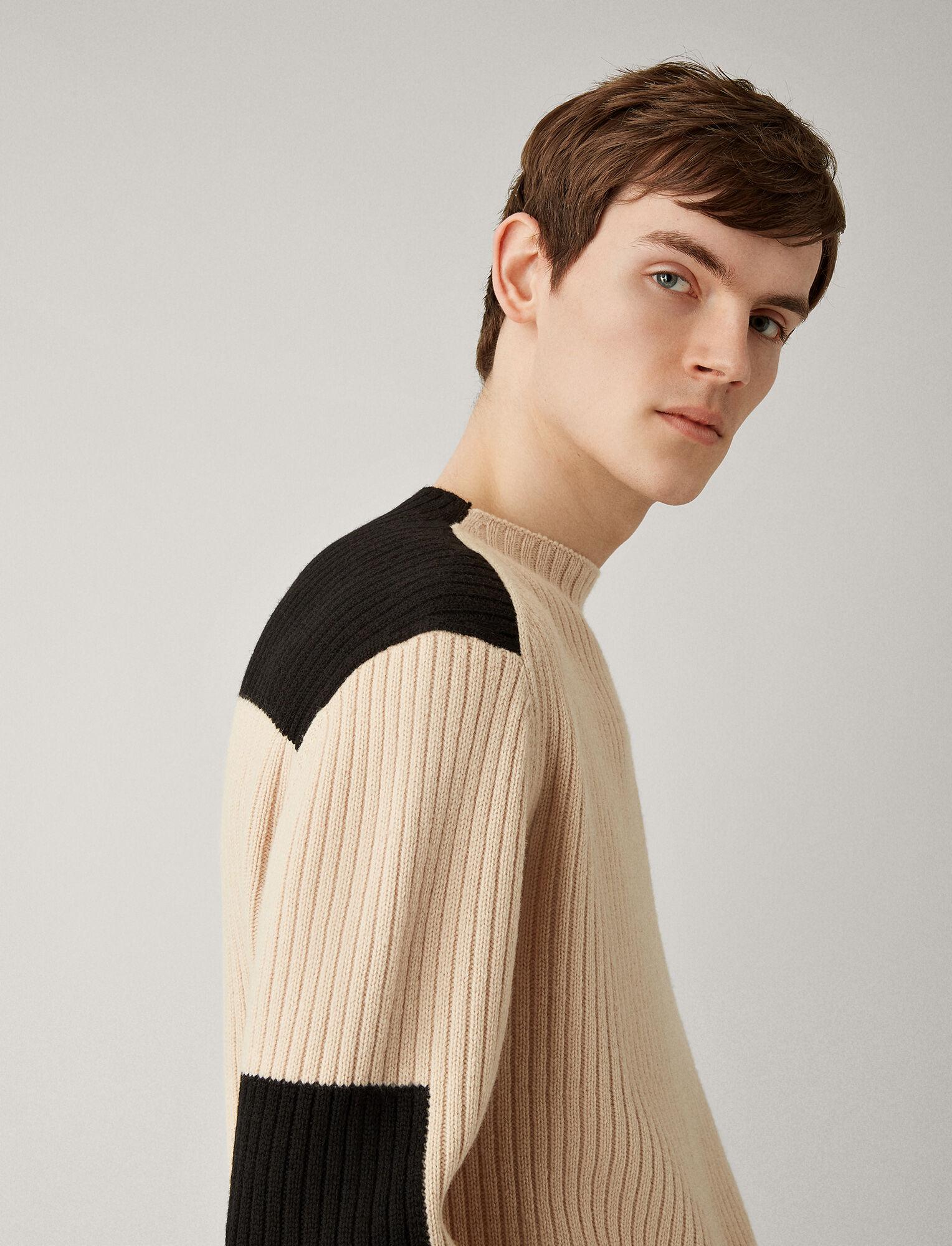 Joseph, Rib Sweater Soft Wool Knitwear, in LATTE